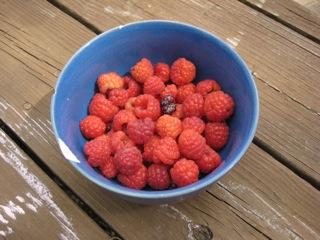 moreraspberries