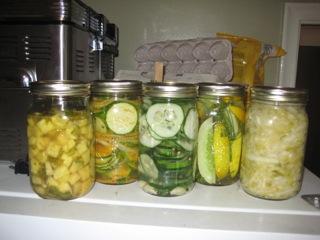 fermentationmaniac