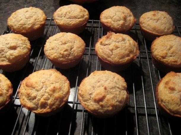 coconut manna muffins