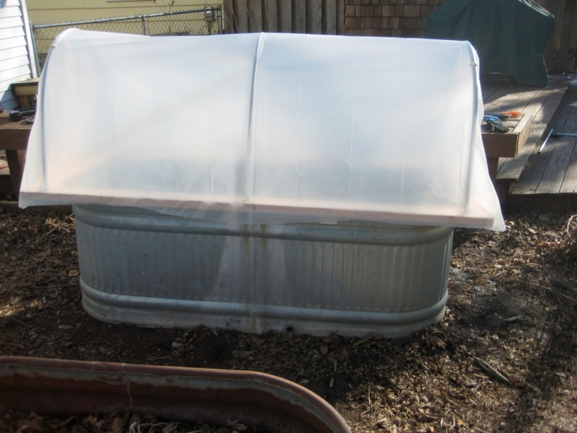 hoop house on a stock tank