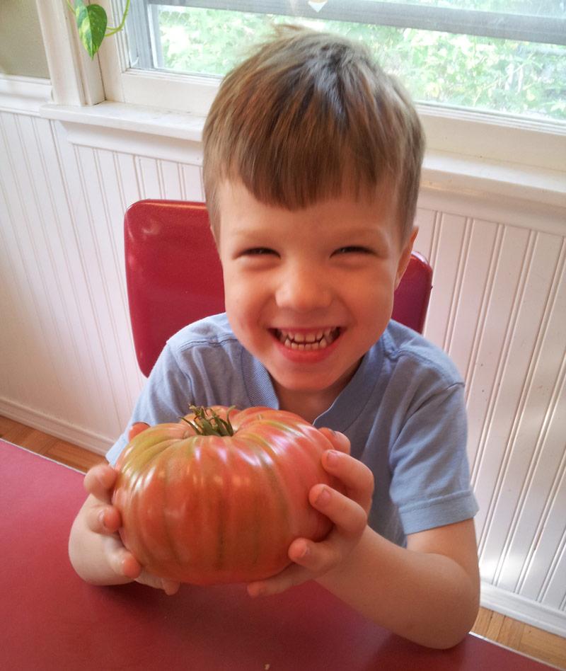 large heirloom tomato