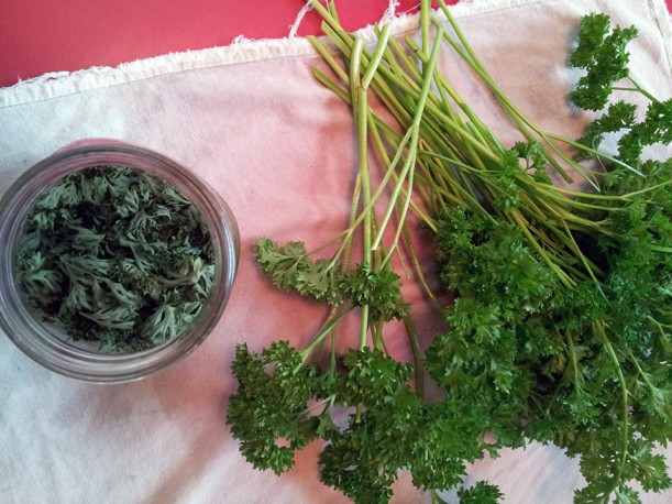 Dried and fresh curly parsley, via The New Home Economics