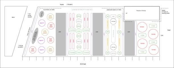 Garden layout 2011