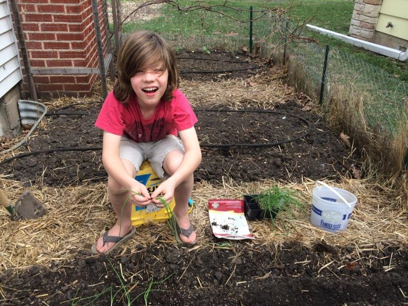 Rowan planting onions