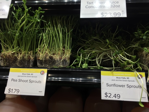 Soil Sprouts at Seward Co-op, via The New Home Economics