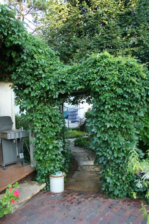 Garden arch, via The New Home Economics