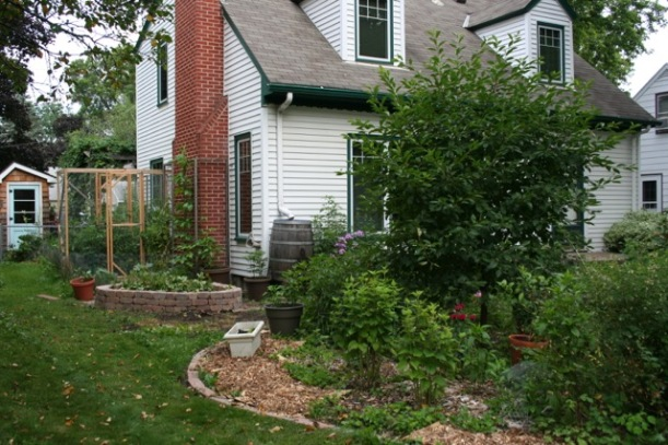 Front yard cherry tree garden, via The New Home Economics