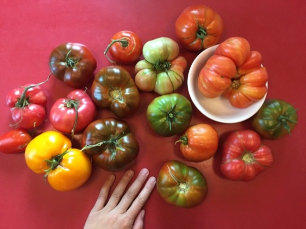 Heirloom tomatoes, via The New Home Economics