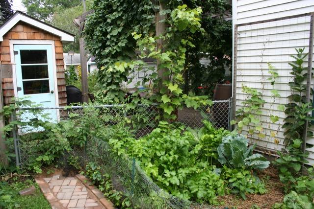 Garden shed, via The New Home Economics