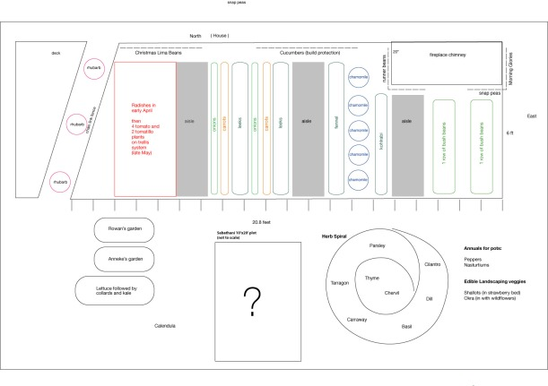 Sample garden layout for 6 foot by 20 foot garden, via The New Home Economics