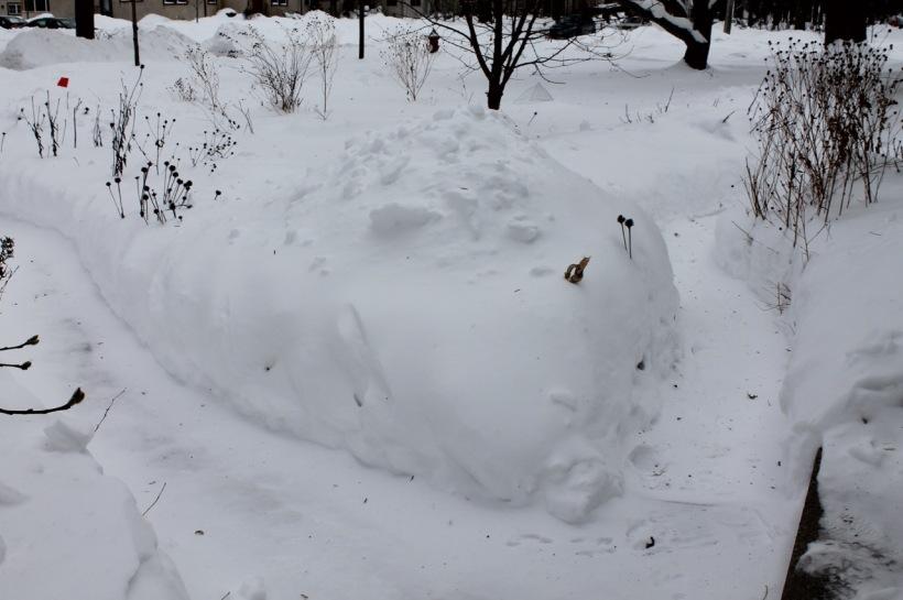 A snowy winter