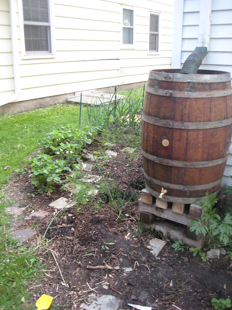 A rain barrel next to a house